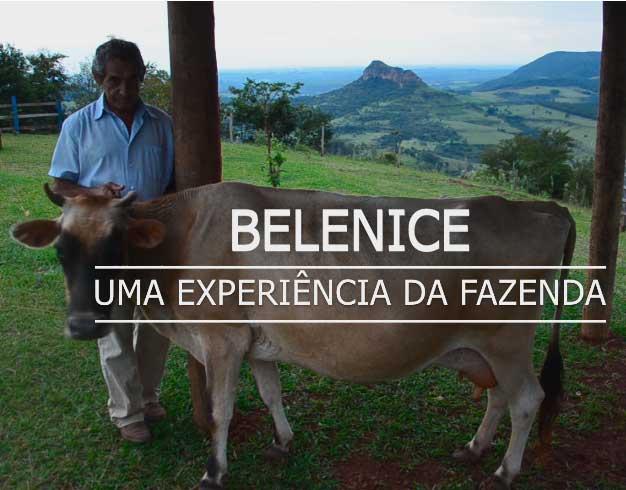 Belenice: uma experiência da fazenda